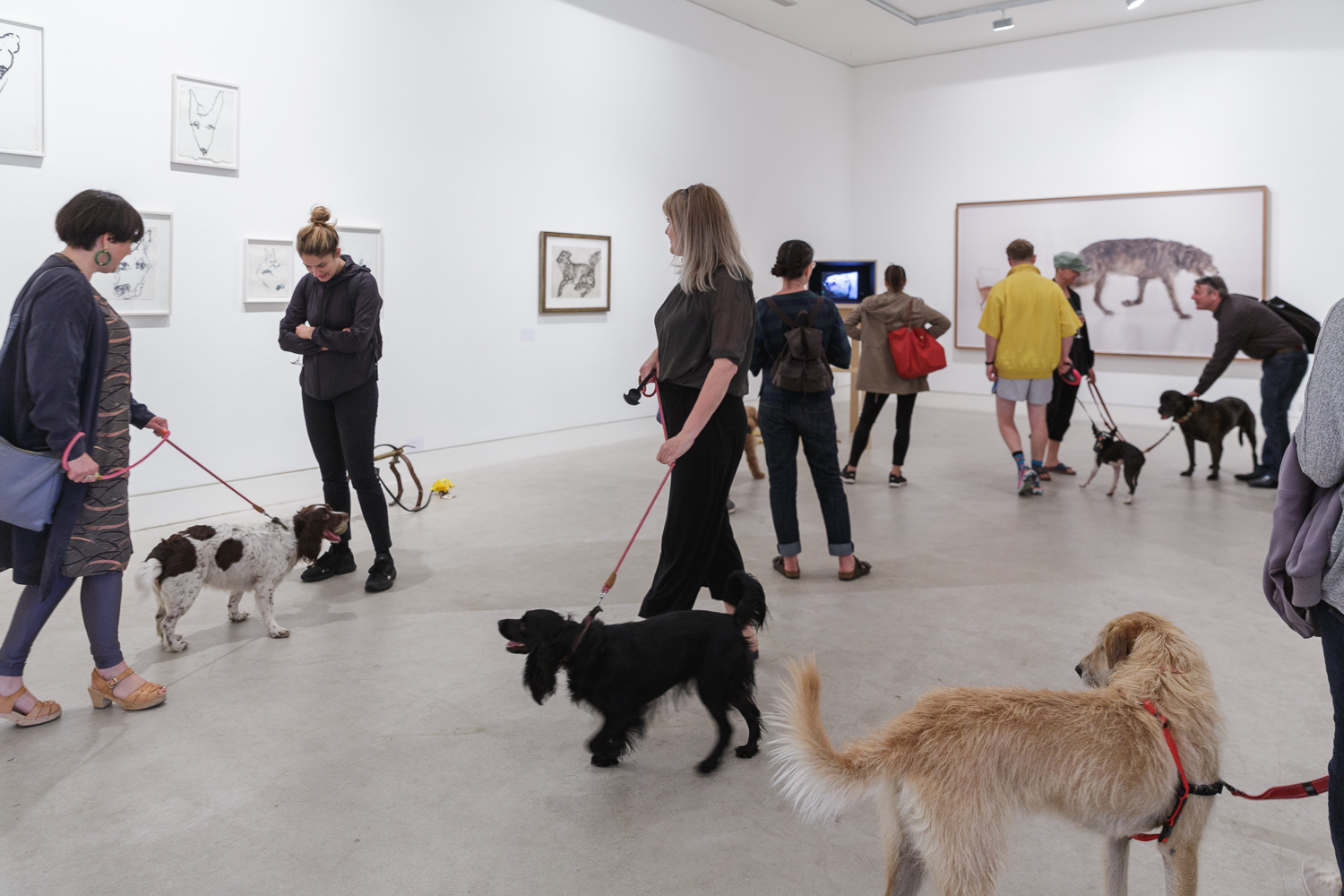 Lake Gallery filled with dogs and people viewing art at the preview of DOG SHOW in 2018