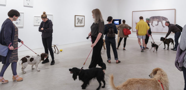 People and their dogs walking around Southwark Park Galleries, Lake Gallery that is a white walled space for the preview of DOG SHOW.