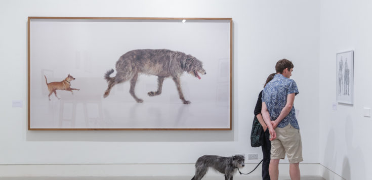 A large photographic print by Martin Creed of two dogs. Next to the framed print are two people with a dog viewing another work at Southwark Park Galleries // Lake Gallery for DOG SHOW 2019