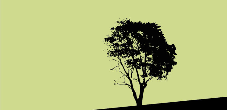 A black silhouette of a tree on a green background.